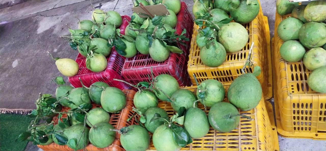Ghép hàng đông lạnh Sài Gòn Hà Nội