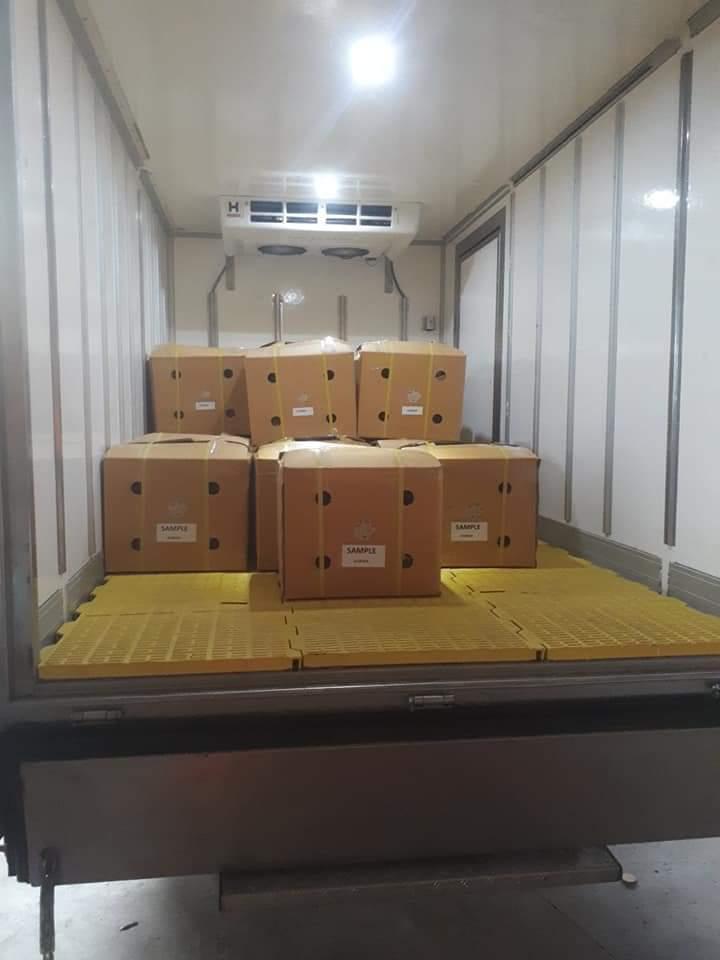 Xe đông lạnh chở hàng tại Nhơn Trạch