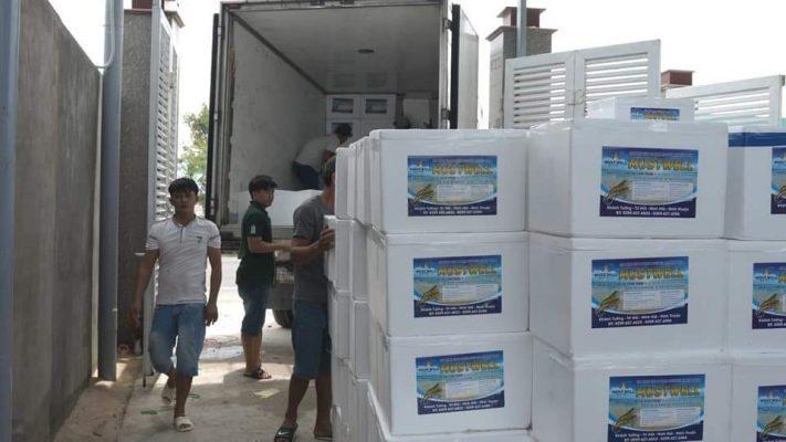 Chở hàng đông lạnh Sài Gòn Quy Nhơn